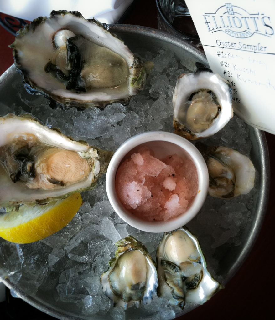 o is for oysters and ocean threats